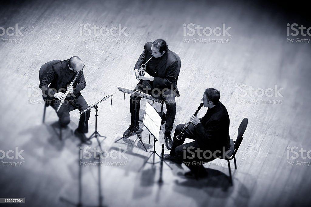 Trio royalty-free stock photo