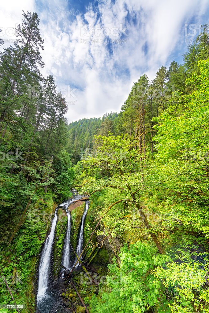 Triple Falls Vertical View stock photo