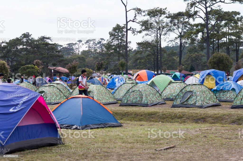 Loei / Thailand - Dec 2016:Trips up the hill at Phu Kradueng National Park and Camping in Forest, Loei,Thailand on Dec 26, 2016 in Loei Thailand. stock photo