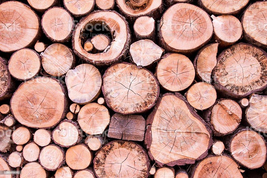 tronchi secchi accatastati uno sopra l'altro in montagna stock photo
