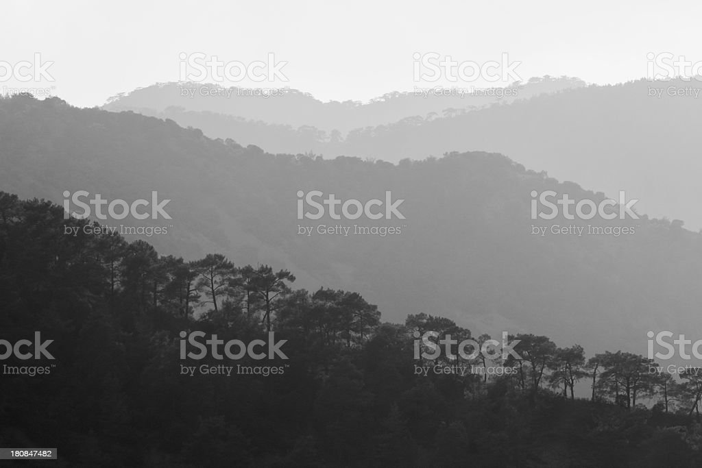 Troodos cypriate mountains  Cyprus foggy early morning stock photo