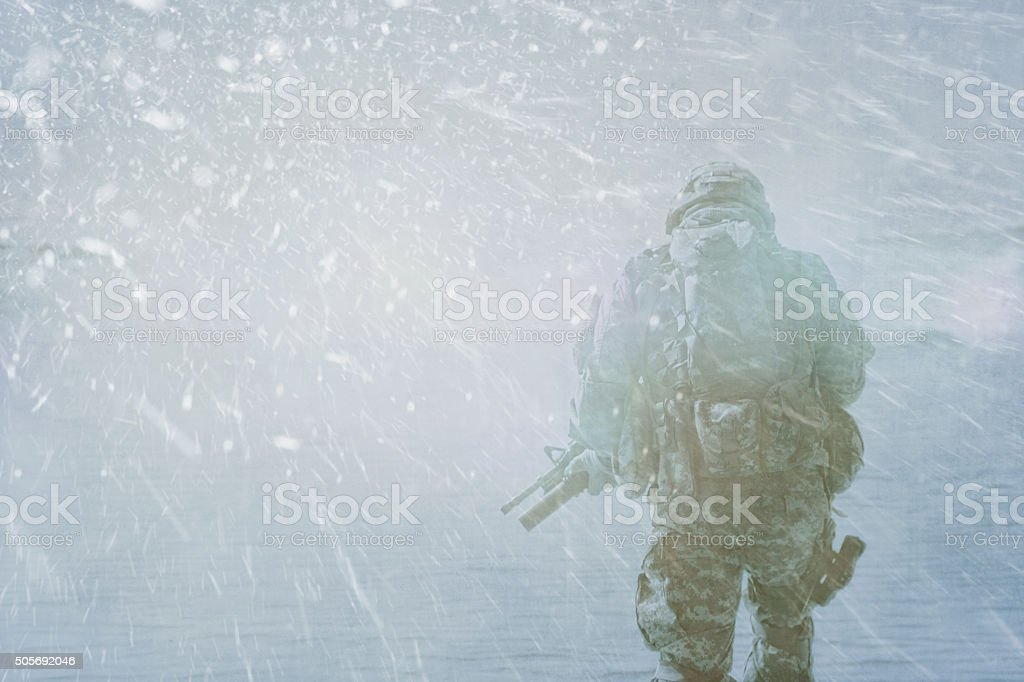 Trooper winter storm stock photo