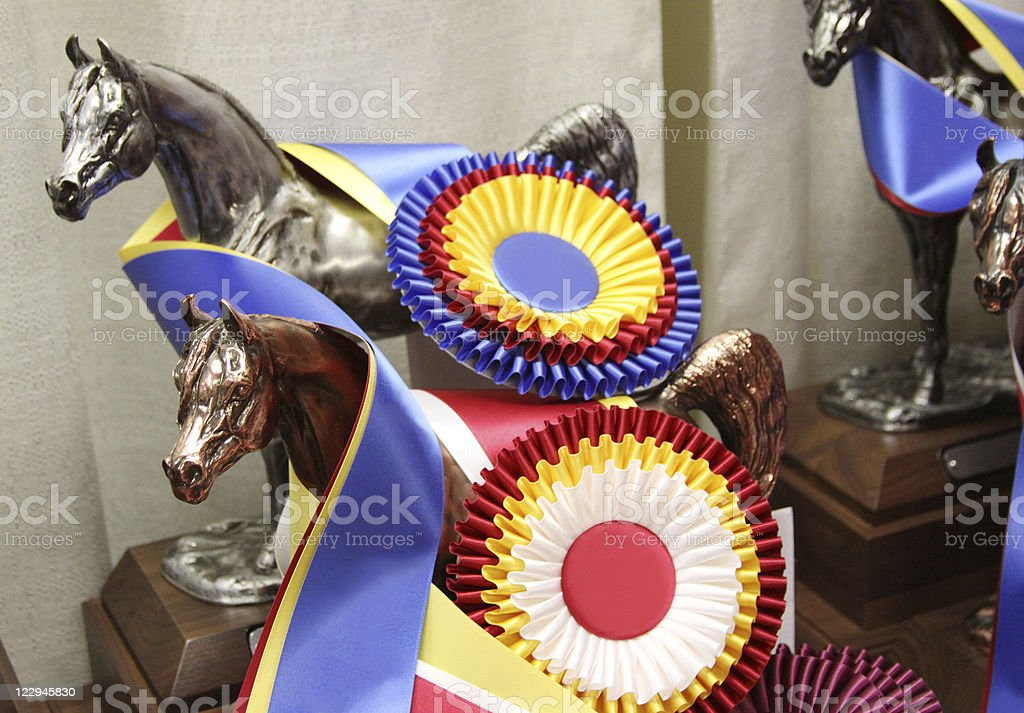 Trophies for Horses royalty-free stock photo