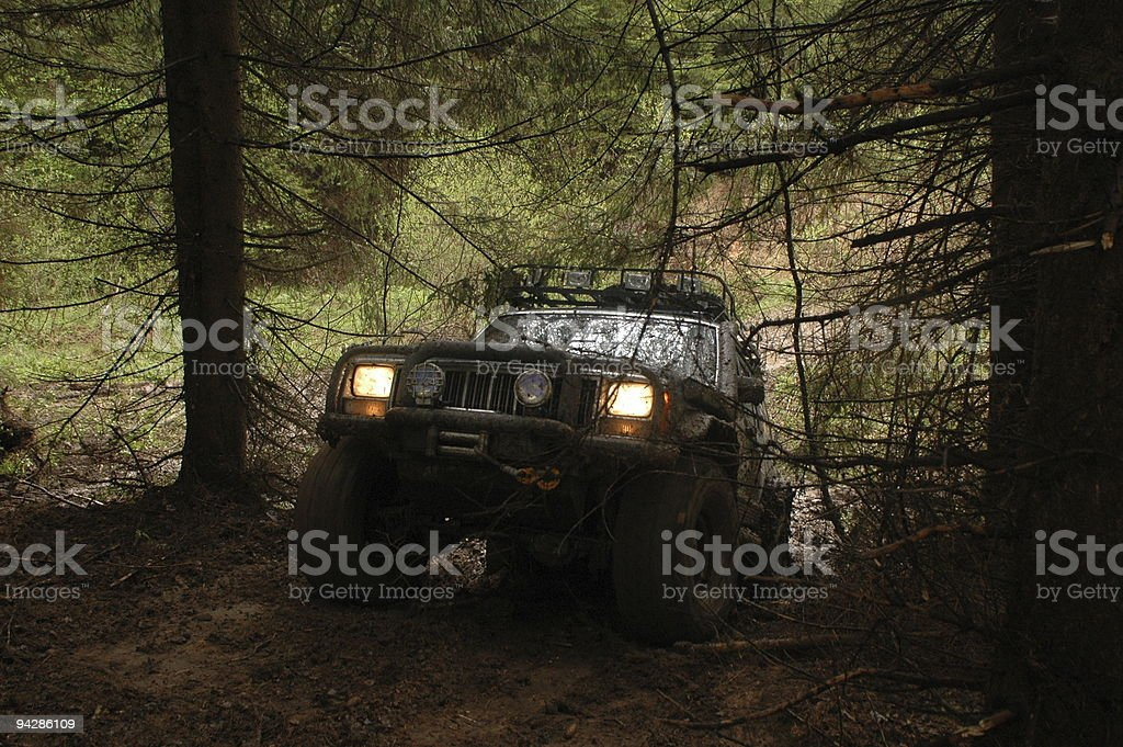Trophy car in wood stock photo
