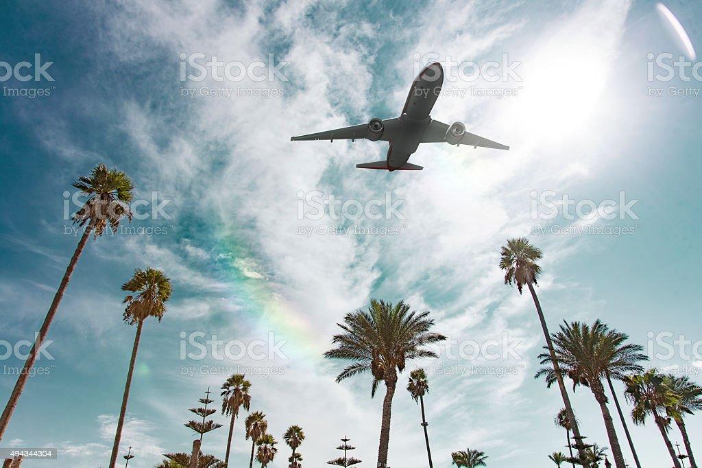 Tropic Flight stock photo