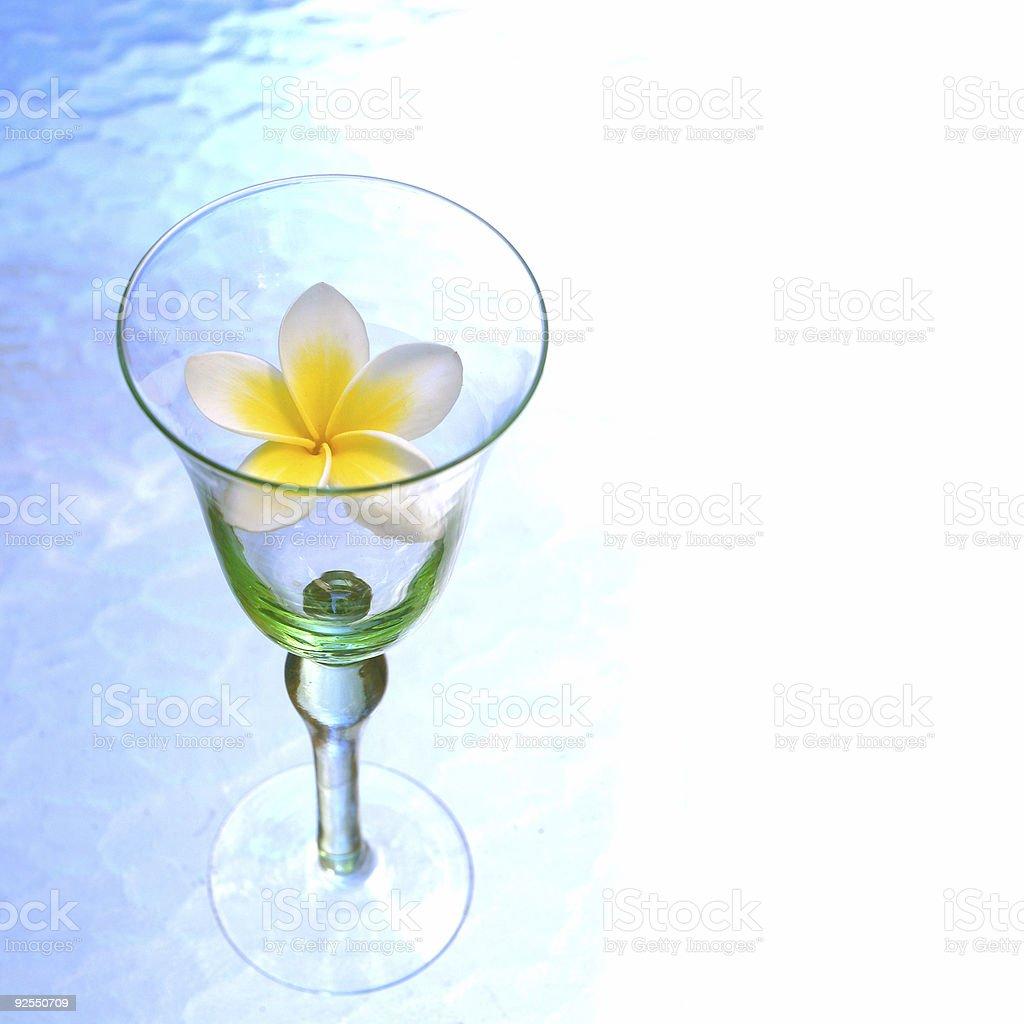 Tropic nectar 2 stock photo