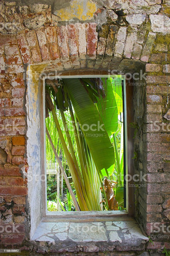 Tropical architecture royalty-free stock photo