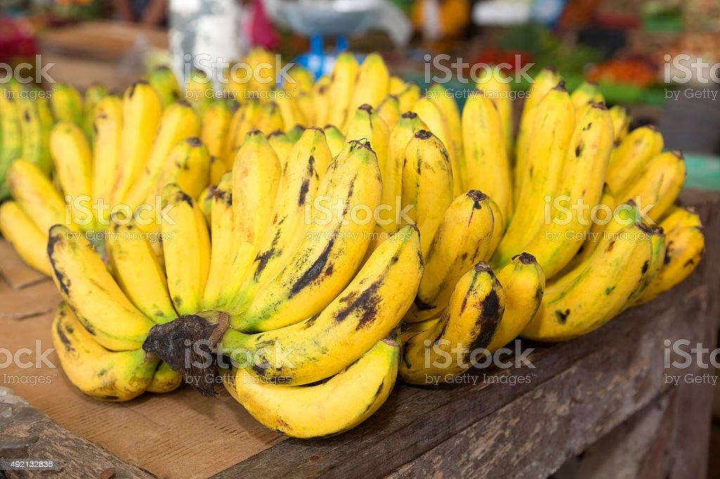 Tropische Bananen Lizenzfreies stock-foto