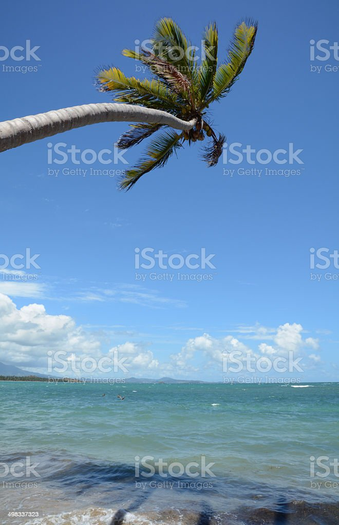 Tropical Beach 4 royalty-free stock photo