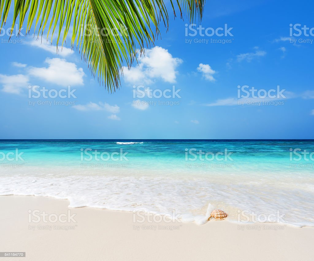 Tropical beach and sea view stock photo