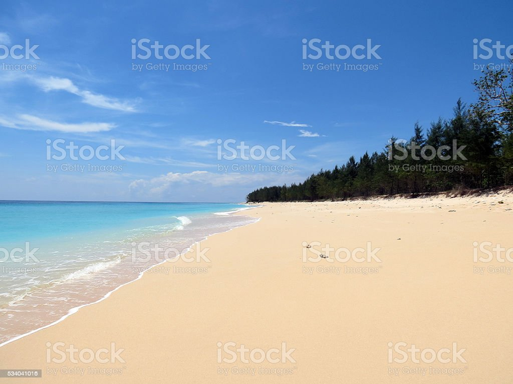 Tropical Beach Andamans stock photo