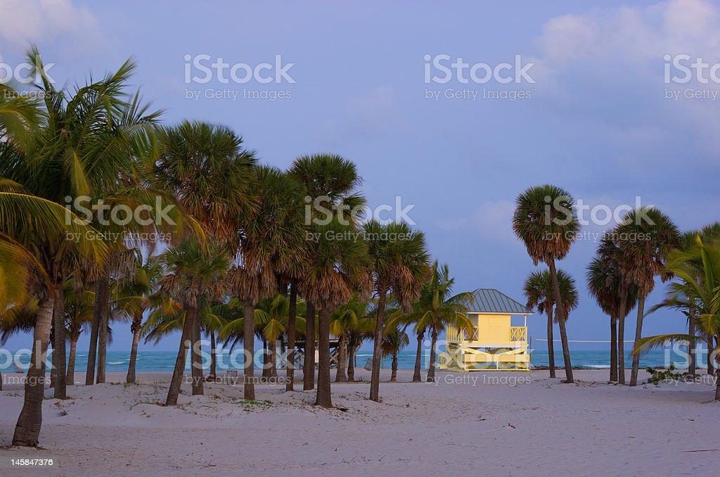 Tropical Beach at Dusk stock photo