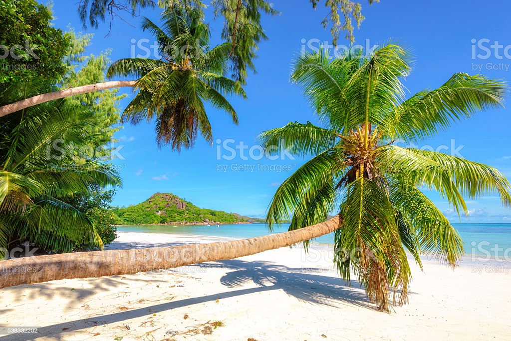 Tropical beach at island Mahe, Seychelles stock photo