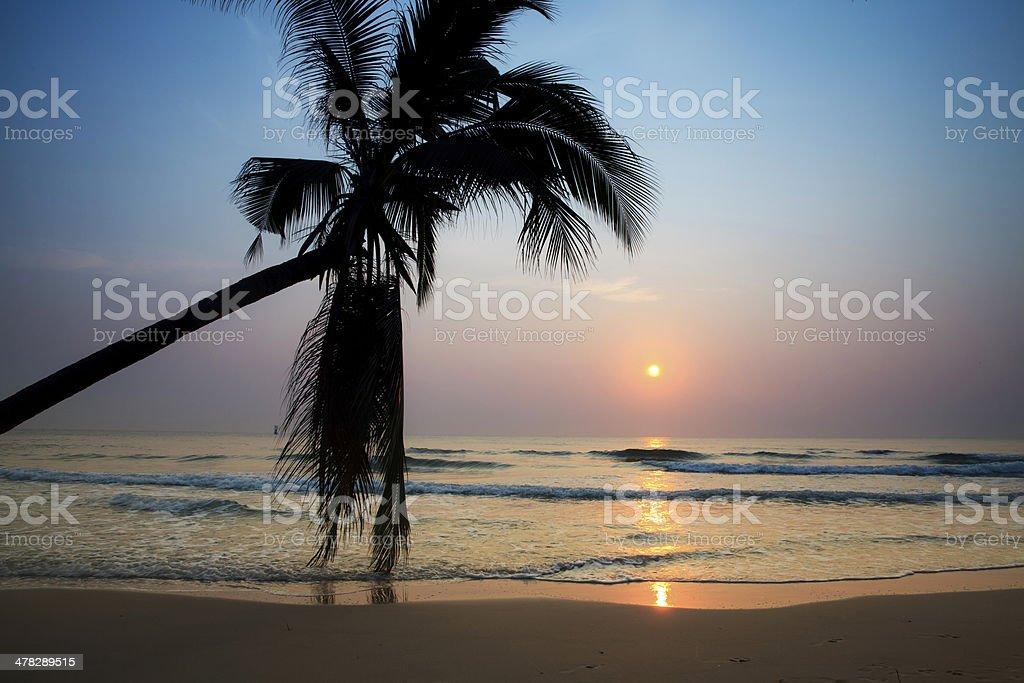 Tropical beach at sunrise royalty-free stock photo