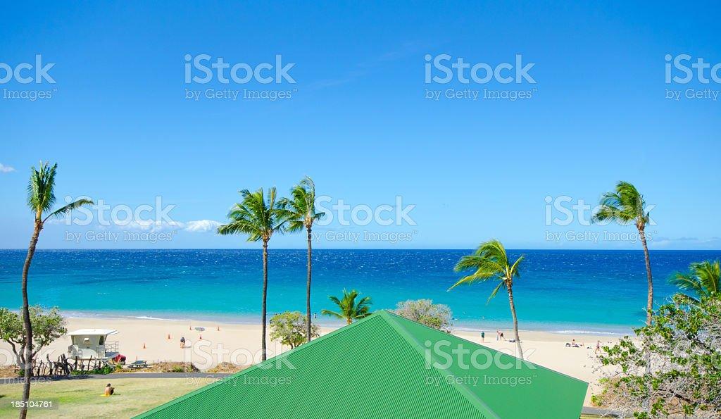 Tropical Beach - Hawaii stock photo