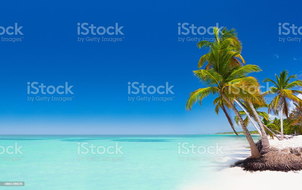 Tropical beach in Dominican Republic stock photo