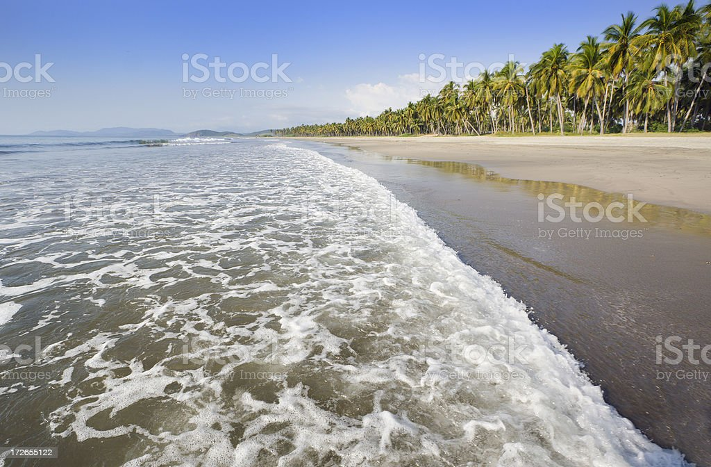 Tropical Beach in Paradise stock photo