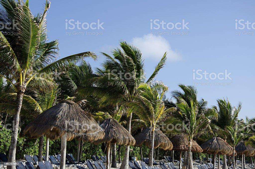 Tropical beach in Riviera Maya, Mexico royalty-free stock photo