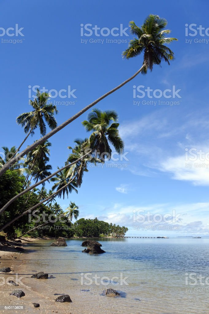 Tropical Beach in Savusavu, Vanua Levu, Fiji stock photo