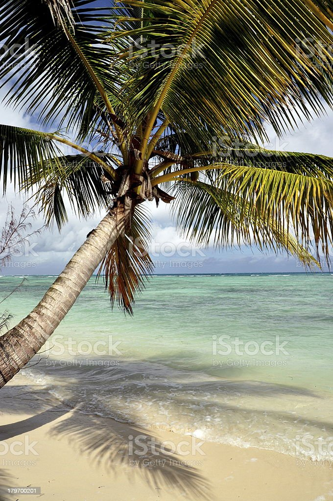 Tropical beach landscape royalty-free stock photo