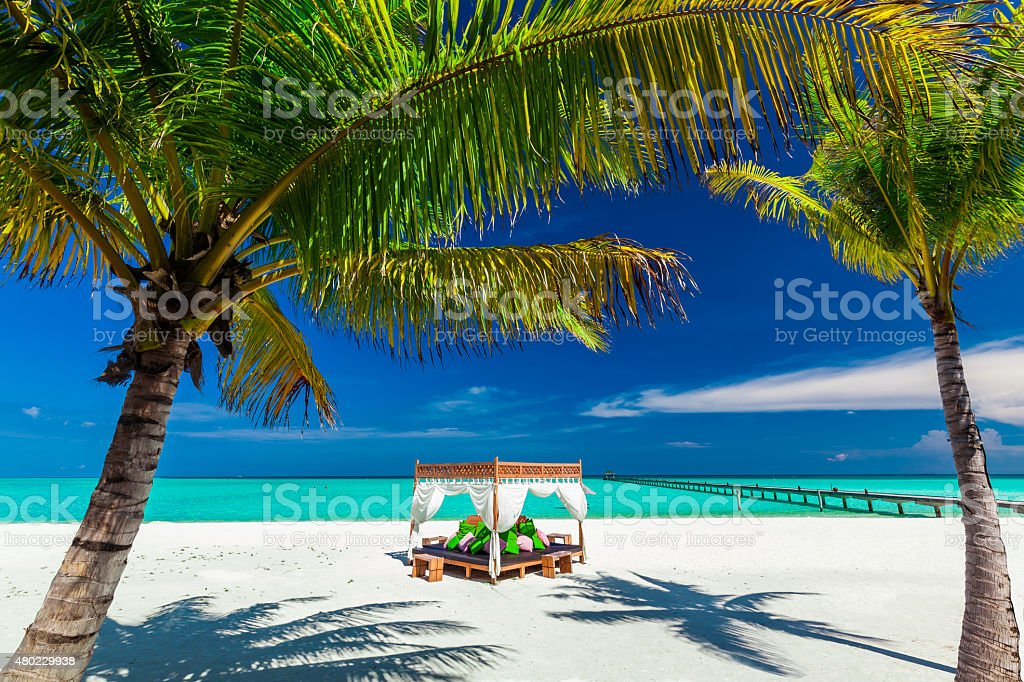 Tropical beach, palm trees and place to relax stock photo
