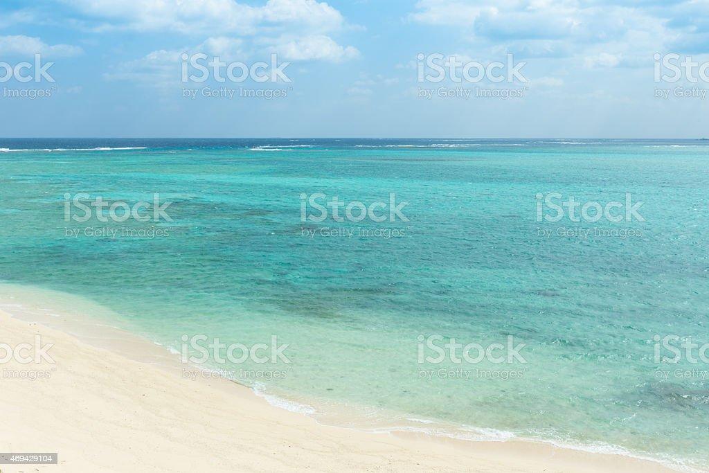 Tropisches Paradies voller coral in Okinawa Lizenzfreies stock-foto