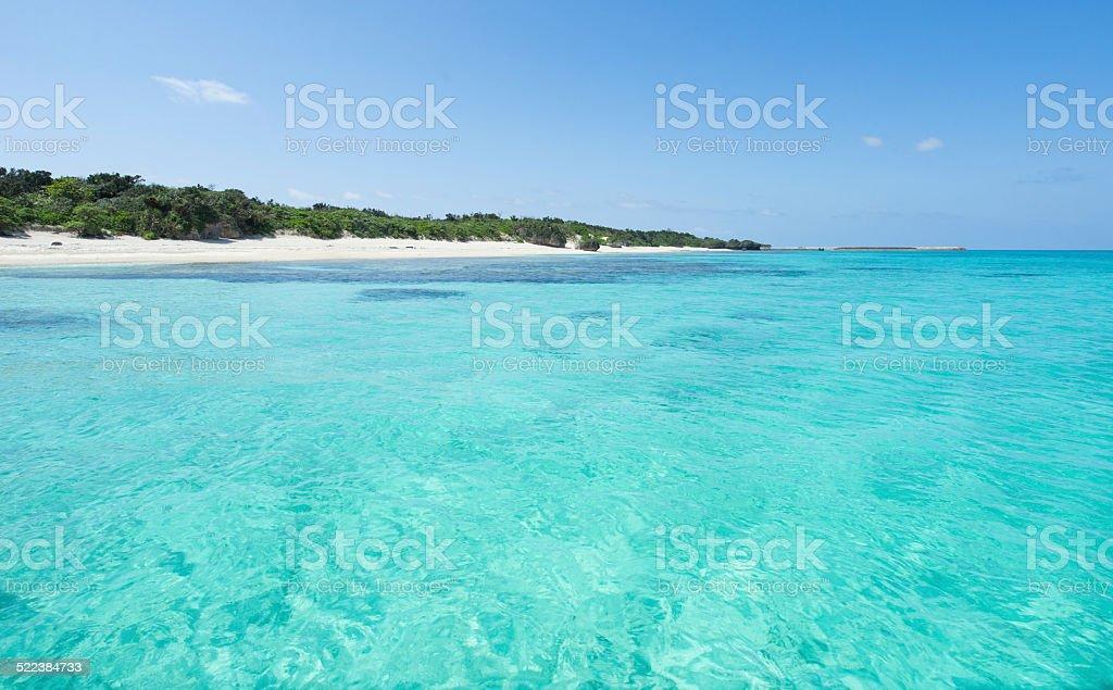 Tropisches Paradies auf Okinawa, Japan Lizenzfreies stock-foto