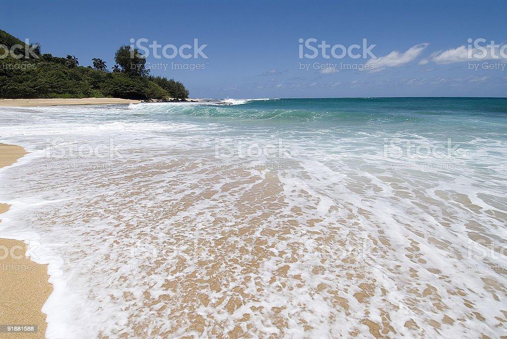 Playa tropical foto de stock libre de derechos