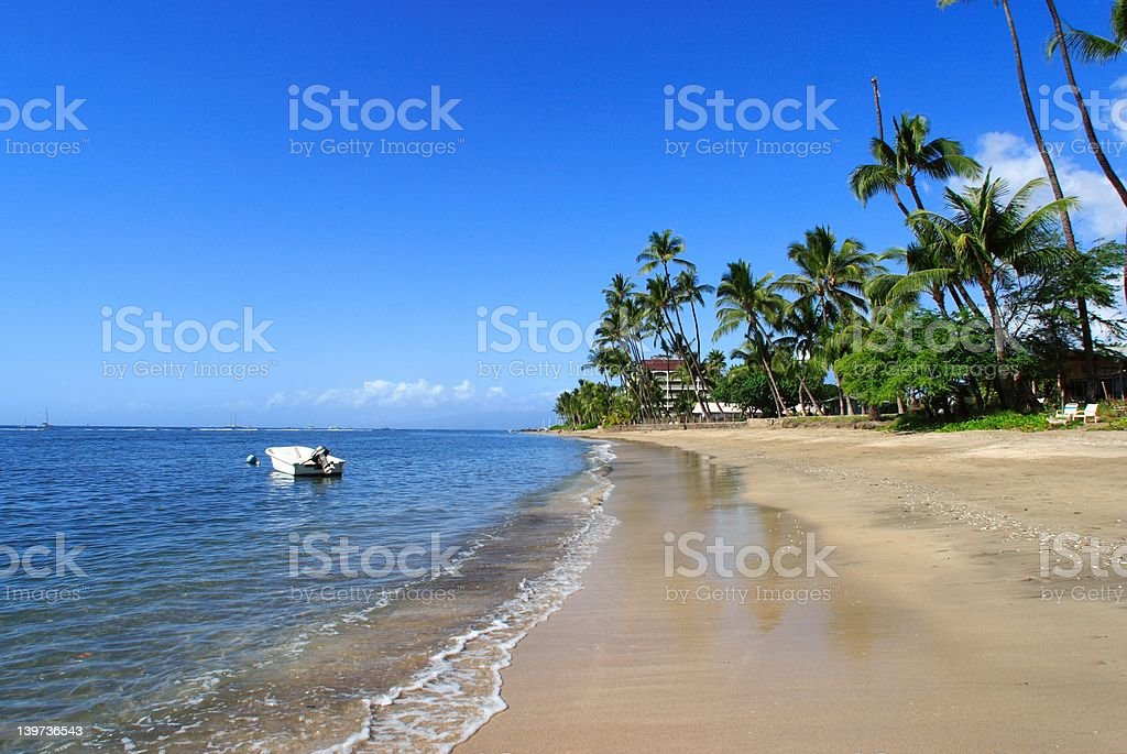 Tropical beach scene stock photo
