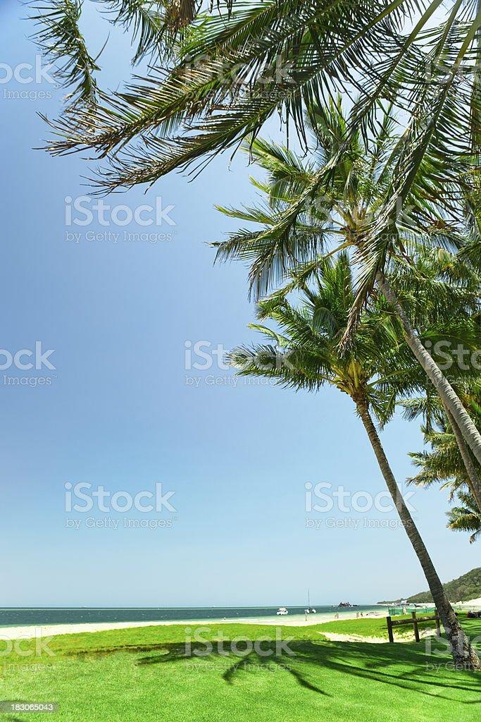 Tropical beach scene royalty-free stock photo