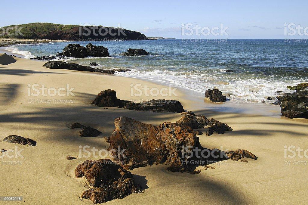 Tropical Beach Shoreline royalty-free stock photo