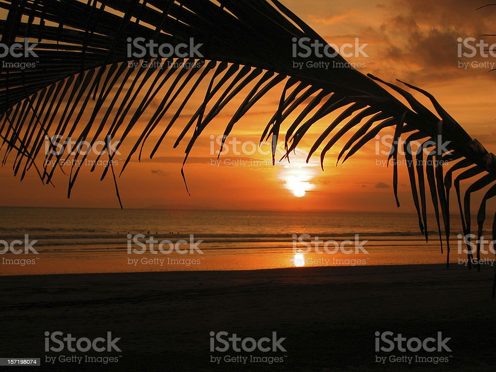 Tropical Beach Sunset and Palm Trees, Jaco, Costa Rica royalty-free stock photo