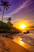 A tropical beach sunset on a beautiful day