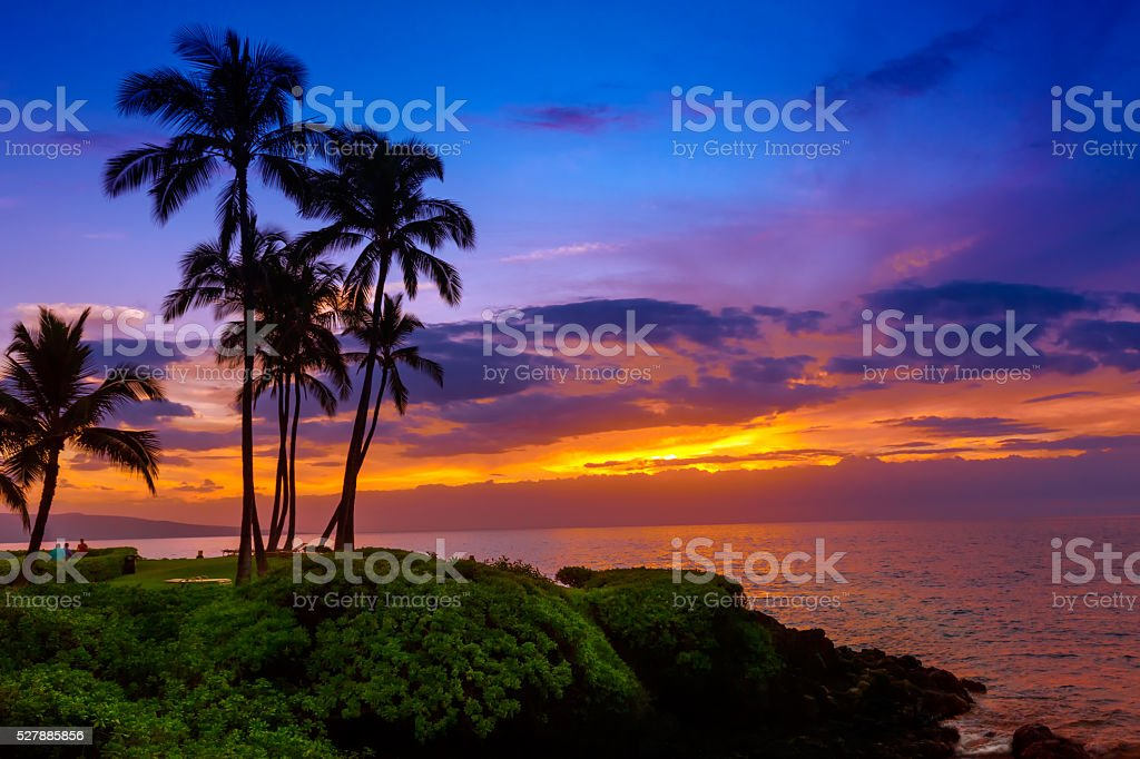 Tropical beach sunset stock photo