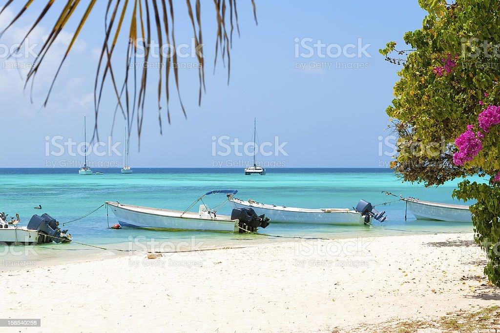 Tropical beach, Venezuela stock photo