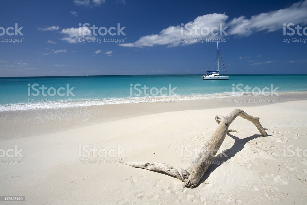 Tropical Beach with Boat and Driftwood stock photo