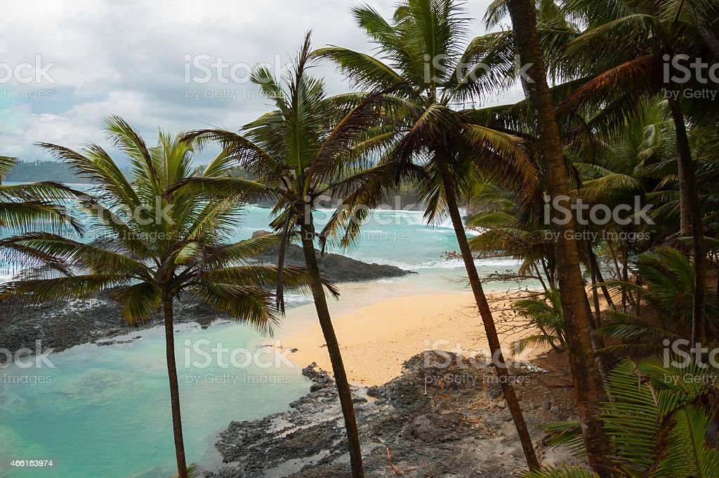 Tropical beach with palm trees and pristine blue sea. stock photo