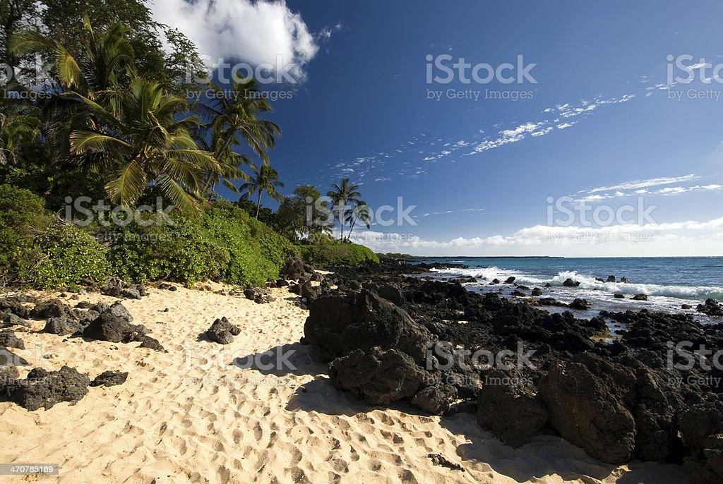 Tropical beach with palm trees, golden sand and volcanic rock stock photo
