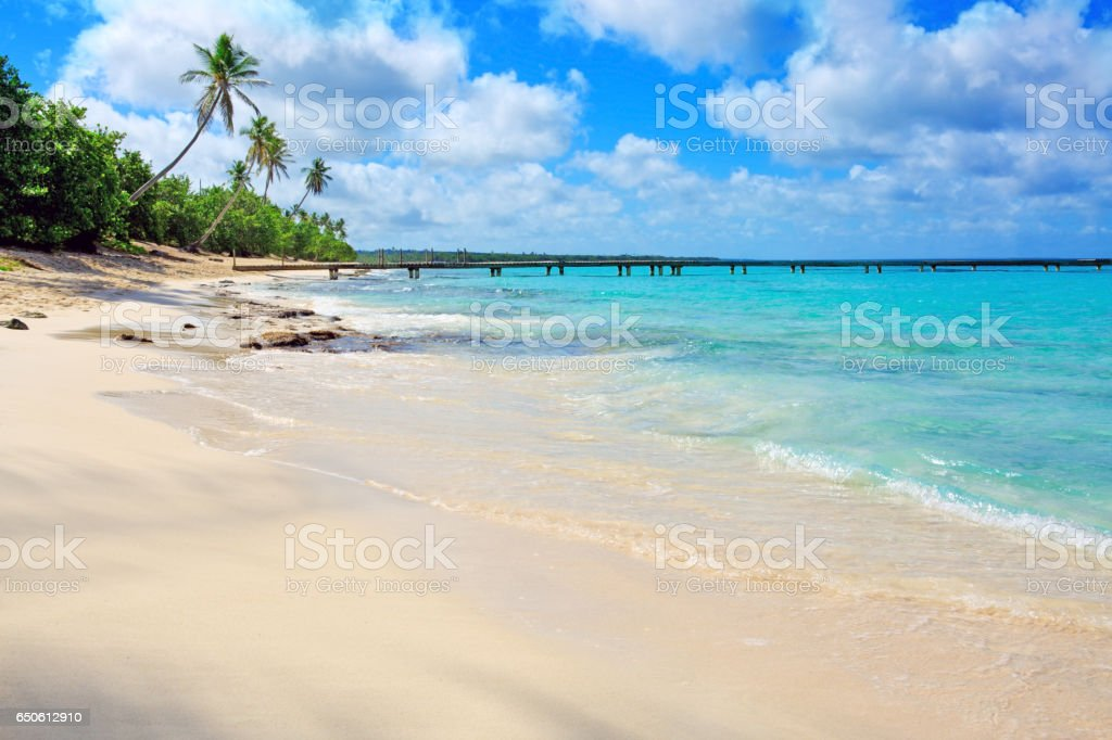 Tropical beach with palms and Caribbean sea stock photo