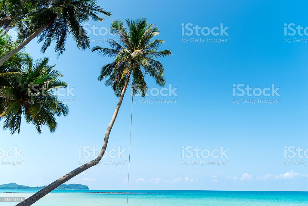 Tropical beach with sea, blue sky and palm trees, stock photo