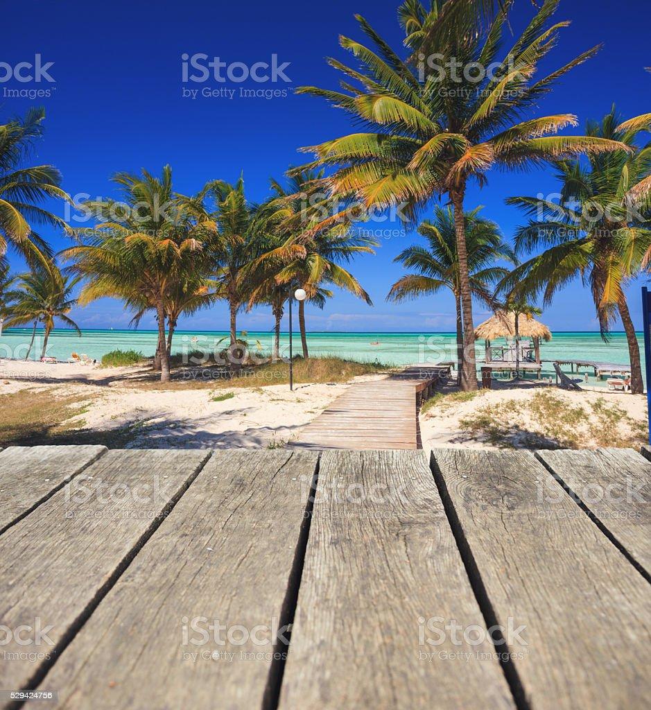 Tropical beach with sunbeds stock photo