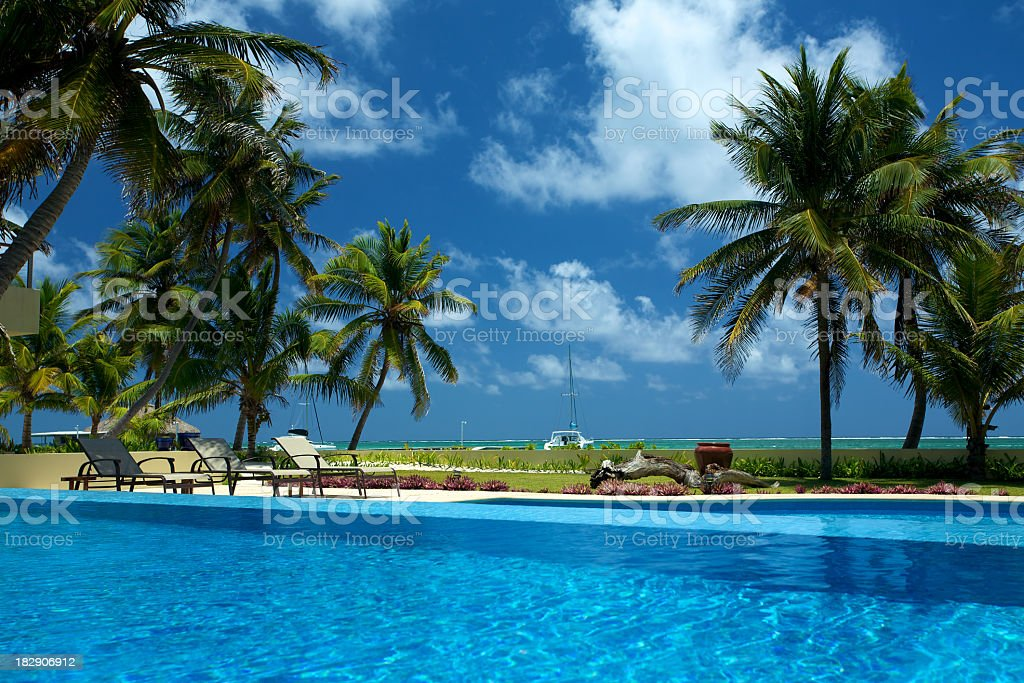 Tropical blue pool with pine trees and chairs surrounding it royalty-free stock photo