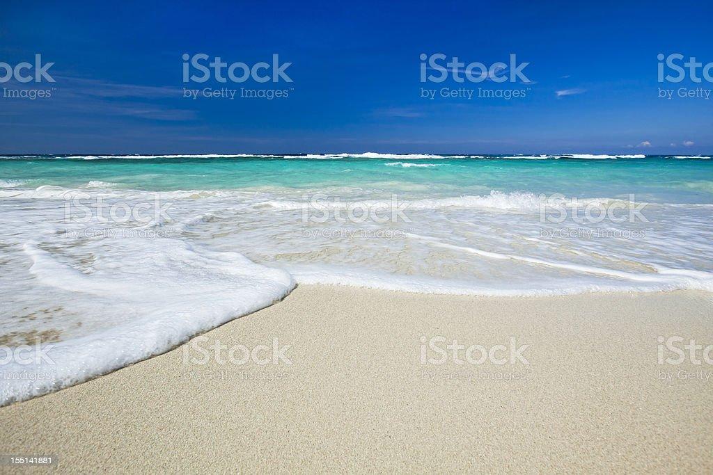 Tropical Caribbean Beach royalty-free stock photo