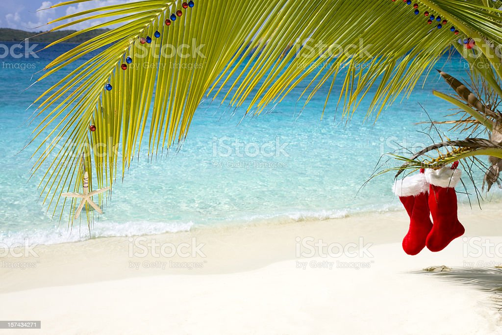 tropical Christmas in the Caribbean royalty-free stock photo