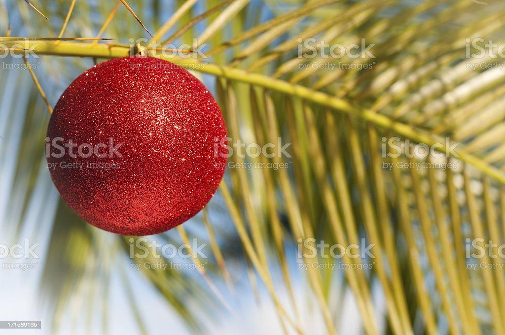 Tropical Christmas - palm tree ornament royalty-free stock photo