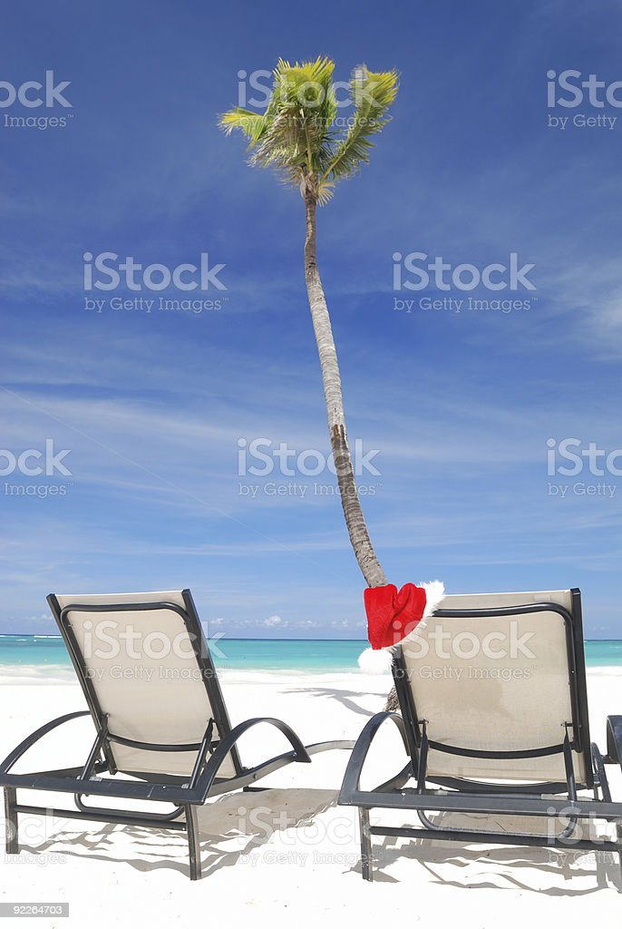 Tropical christmas royalty-free stock photo
