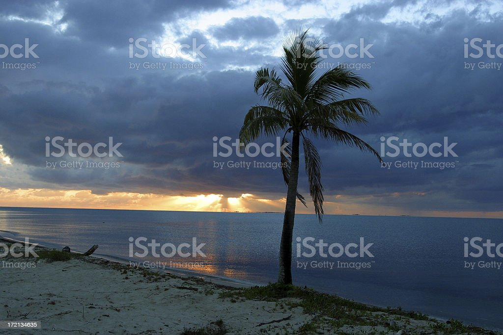 Tropical Coast royalty-free stock photo