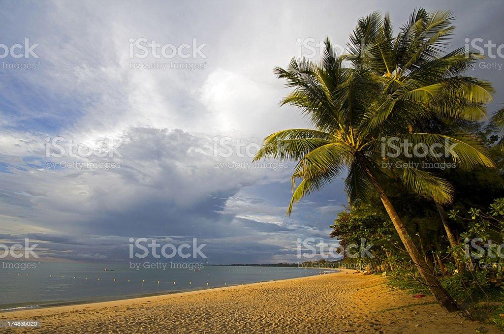 Tropical Coastline royalty-free stock photo