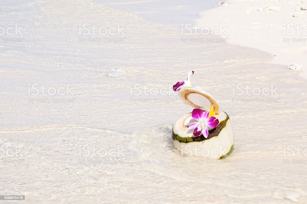 Tropical coconut cocktail stock photo