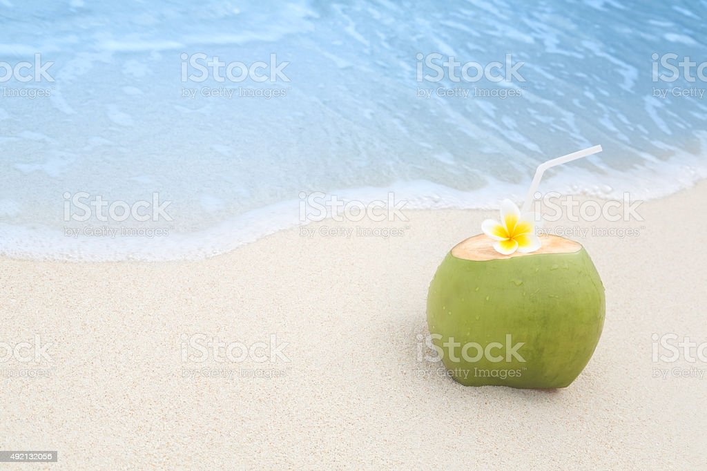 Tropical Coconut Refreshment stock photo
